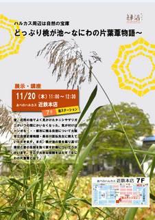 kataha-poster2014.jpg